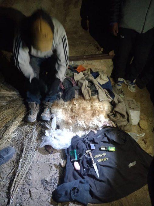 Detuvieron a cazador furtivo con 45 cueros de vicuña