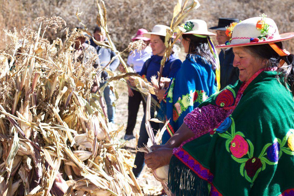 Toda la cultura y saberes ancestrales - Foto de Walter Reinaga en Valle Colorado