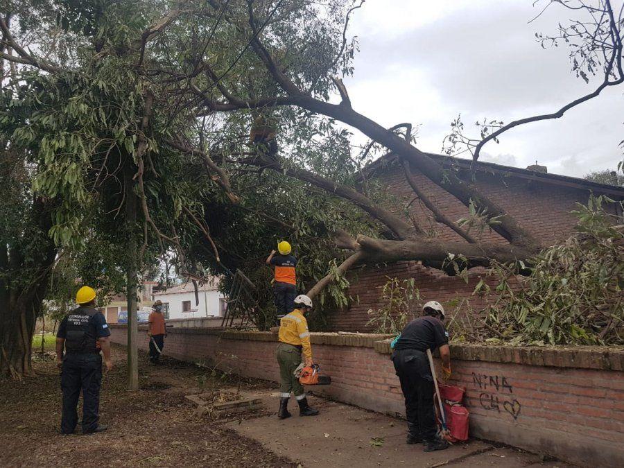 Libertador: Continúan las tareas de asistencia luego del temporal