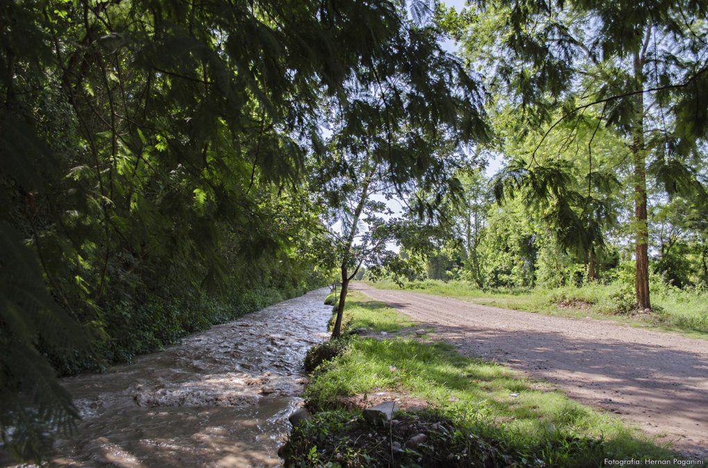 Las cuatro regiones de Jujuy presentes en La Ruta Natural