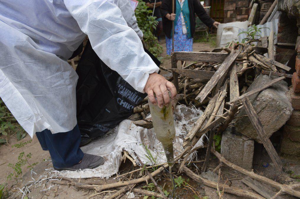 Medidas preventivas para evitar la propagación del dengue
